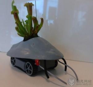 搬运盆栽植物的创意机器人