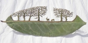 叶子上的雕刻艺术创意设计