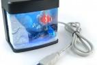 USB鱼缸 桌面报伴侣