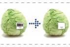 让条形码来告诉你蔬菜的新鲜度