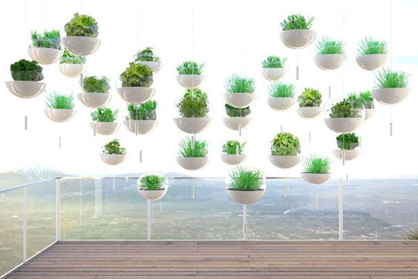 阳台上悬浮绿植的概念设计