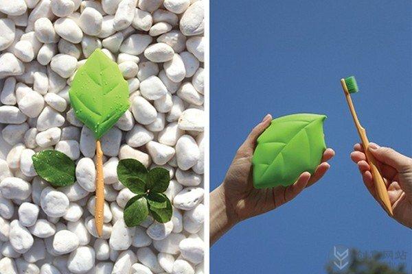 可携带的绿叶水杯