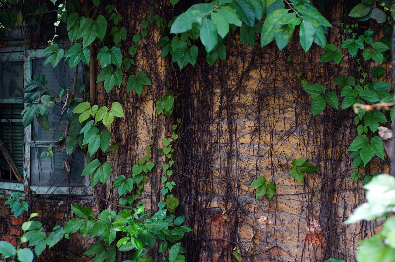 红砖厂创意园墙面