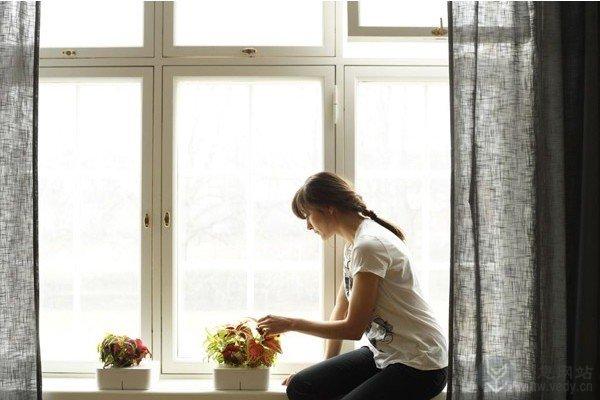 创意智能花盆的室内植物盆栽(四)