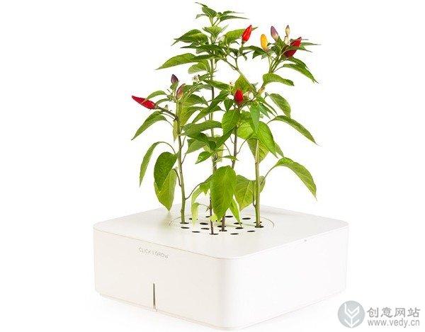 创意智能花盆的室内植物盆栽(三)