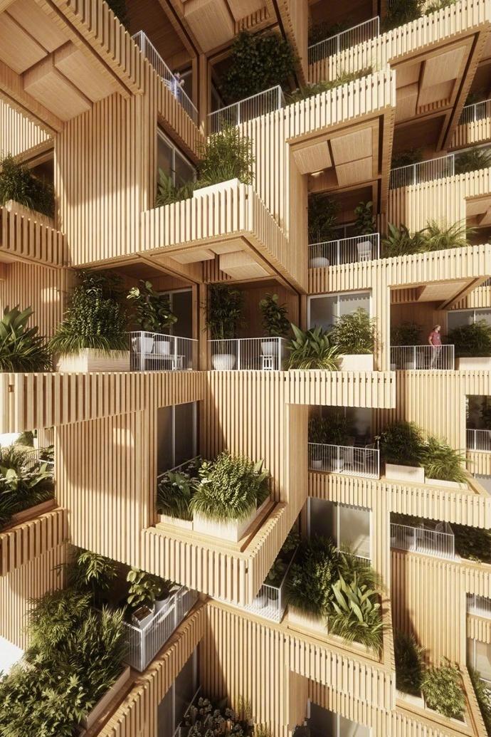 """交叉复合木材的 """"摩天树塔""""建筑大楼"""