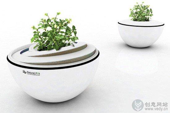 环保低碳生活的室内盆栽植物