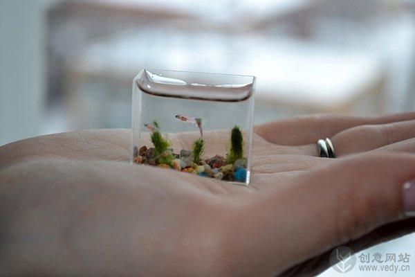 微型袖珍的创意鱼缸设计